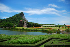 View of vivid. The vivid view nice sky and green field Stock Photos