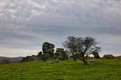 View from Vixen Tor Dartmoor Royalty Free Stock Photo