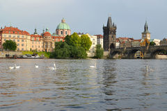 View of the Vltava River, Karlov Bridge and Bridge tower. Prague Stock Photography