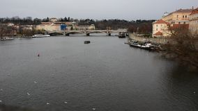 View of a Vltava river in Prague city stock footage