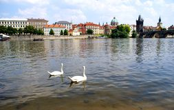View of Vltava River in Prague Stock Images