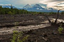 View of volcanoes: Klyuchevskaya Sopka, Bezymianny, Kamen from river Studenaya at dawn. Kamchatka Peninsula. Royalty Free Stock Photo