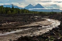 View of volcanoes: Klyuchevskaya Sopka, Bezymianny, Kamen from river Studenaya at dawn. Kamchatka Peninsula. Royalty Free Stock Image