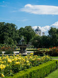 A view of Volksgarten park at Vienna. A view of Volksgarten park with flowering yellow and red roses in front of Hofburg, Vienna, Austria Royalty Free Stock Image