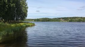 View of the Vuoksa river in Finland. The shore with trees with a lush crown, grass, light ripples of water, seen the other side with dense vegetation, the city stock video footage