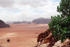 View, Wadi Rum, Jordan Royalty Free Stock Image