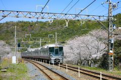 View of Wakayama local train traveling on rail tracks with flourish. View of Wakayama local train traveling on rail tracks with flourishing cherry blossoms royalty free stock image
