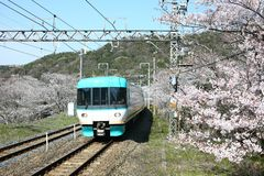 View of Wakayama local train traveling on rail tracks with flourish. View of Wakayama local train traveling on rail tracks with flourishing cherry blossoms royalty free stock images