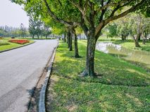 View of Walk Way and Trees in the Park. Scenic View of Walk Way and Trees in the Park royalty free stock photo