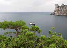 View on the walking ship in a bay in Crimea. View of the sea and the floating ship from a juniper grove on the cape Kaphick in the Crimea Stock Photos