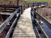 View of a walkway bridge over water. Wooden walkway over a pond with trees and grass Royalty Free Stock Photos