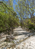 View of walkway next to Rio Castril Royalty Free Stock Photography