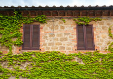 View of a wall with two windows and ivy Stock Photo