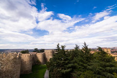 View from walls of Avila Royalty Free Stock Images