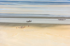 View from walls of Mont Saint Michel, France Royalty Free Stock Photos