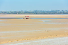 View from walls of Mont Saint Michel, France Royalty Free Stock Photography
