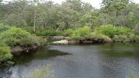 View of the Walpole River Western Australia in autumn. Stock Photo