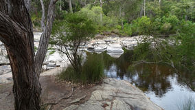 View of the Walpole River Western Australia in autumn. Royalty Free Stock Photo