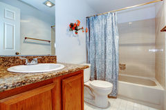 View of the washbasin cabinet and bath tub. Light blue bathroom with wooden washbasin cabinet, white toilet and tub. Decorated with fake wall flowers and blue Stock Photo