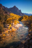 View of the Watchman mountain and the virgin river in Zion Natio Royalty Free Stock Image
