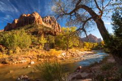 View of the Watchman mountain and the virgin river in Zion National Park located in the Southwestern United States. View of the Watchman mountain and the virgin royalty free stock photos
