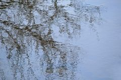 REFLECTION OF BRANCHES IN WATER. View of water in flowing stream reflecting blue sky and dark bare branches of a tree Stock Image