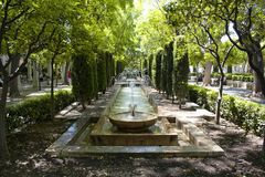 View of water fountain and trees stock image