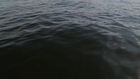A view of the water from moving boat