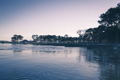 View of Water and Trees Royalty Free Stock Photo