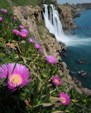 Waterfall Lara. This is a view of waterfall Lara (the end of Dudan river, Antalya, Turkey). Bright violet flowers are in the foreground, sea and rocks Royalty Free Stock Photos