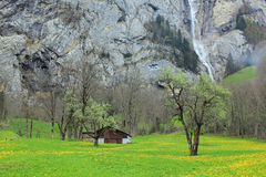 View at waterfall of Lauterbrunnen valley in spring with mountains at the background. View at one of the waterfalls of the Lauterbrunnen valley in Switzerland royalty free stock photography