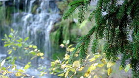View of waterfall in spring. stock footage