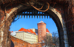 View of the Wawel Castle Royalty Free Stock Photos