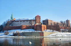 View of the Wawel castle Royalty Free Stock Photo