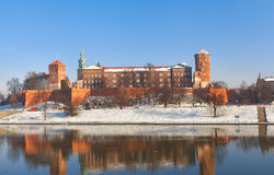 View of the Wawel castle Stock Images
