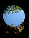 A view from a well - narrow/one dimension of view. A view from a round well, seeing tree, plants and blue sky. Narrow/One Dimension view could be a great Royalty Free Stock Image