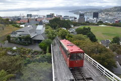 View of Wellington from the Botanic Garden Stock Photo