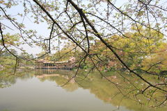 View in West Lake Cultural Landscape of Hangzhou Royalty Free Stock Image