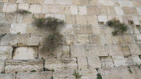 View of a Western wall in Jerusalem. Israel. stock video