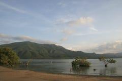 Unare lagoon coastal wetland in Venezuela. View of wetlands and mountains of Unare Lagoon Ramsar site in Anzoategui Venezuela royalty free stock photo