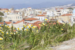 View of the white houses of Chania city from above, Crete, Greec Royalty Free Stock Photos