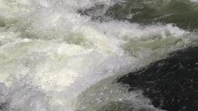 View of the White Nile River rapids stock video footage