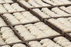 View on white noodles drying Stock Image