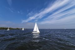 View of white sailing ships sailing on a dark blue Dutch ice lake, with a background of a clear blue sky, with white clouds stripe. S, trees and shrubs in the stock photography