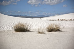 View of White Sands National Monument. This is a view of White Sands National Monument royalty free stock photo