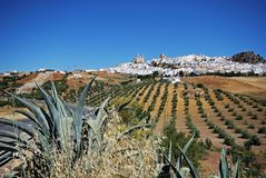 White town, Olvera, Andalusia, Spain. Royalty Free Stock Photos