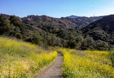 View Within Whiting Ranch Wilderness Park. A view, along a hiking trail, in Whiting Ranch Wilderness Park in Southern California stock photography