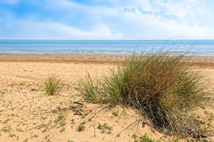 View of wild beach, sea and blue sky with clouds. Royalty Free Stock Images