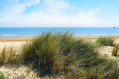 View of wild beach, sea and blue sky with clouds. Royalty Free Stock Image