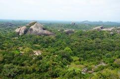 View of wild jungle, Srí Lanka Royalty Free Stock Photo